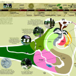 Evolution Garden_map